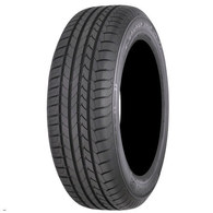GOODYEAR EFFICIENTGRIP PERF. (ASYMMETRIC)